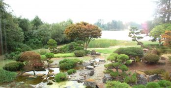 Losing history?: Seko Garden's future uncertain