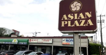 Asian Plaza site for sale